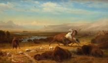 Последний буйвол - Бирштадт, Альберт
