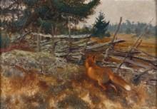 Рыжая лисица у изгороди - Лильефорс, Бруно