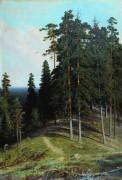 Лес с горы. 1895 - Шишкин, Иван Иванович