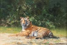 Тигр - Шеперд, Девид (20 век)