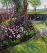 1901=Истон Тимоти=Розы и гуси=птицы пейзаж цветы - Истон, Тимоти