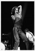 Концерт Rolling Stones (Ролинг Стоунс ) - Вудской, С.