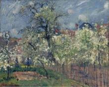 Сад Мобуссон, Понтуаз. Грушевые деревья в цвету,1877 - Писсарро, Камиль