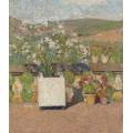 Цветочный ящик с розовым кустом и горшки с геранью на террасе Маркьирол летом - Мартен, Анри Жан Гийом