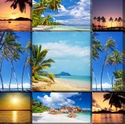 Пальмы, море