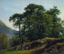 Буковый лес в Швейцарии, 1863 - Шишкин, Иван Иванович
