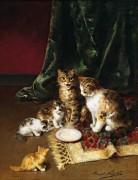 Котячее семейство - Брюнель де Нёвиль, Альфред-Артюр