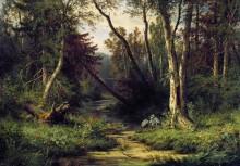 Лесной пейзаж с цаплями, 1870 - Шишкин, Иван Иванович