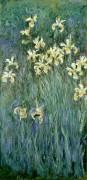 Желтые ирисы - Моне, Клод