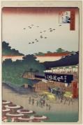 ch 157 - Хиросиге, Андро