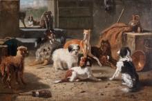 Собачья жизнь - Гемпт, Бернард де