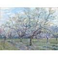 Фруктовый сад с цветущими сливами (Orchard with Blossoming Plum Trees), 1888 - Гог, Винсент ван