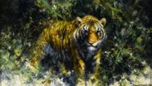 Тигр в зарослях - Шеперд, Девид (20 век)