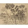 Пейзаж с соснами (Landscape with Pine Trees), 1889 - Гог, Винсент ван