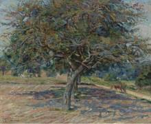 Деревья и Иль-де -Франс, 1878 - Гийомен, Арманд