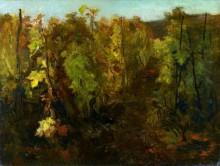 Виноградная лоза - Добиньи, Шарль-Франсуа