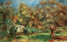 Оливковый сад - Ренуар, Пьер Огюст