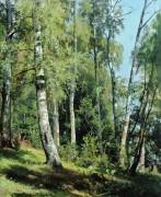 Березовая роща, 1896 - Шишкин, Иван Иванович
