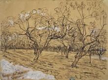 Сад в Провансе (Provencial Orchard), 1888 - Гог, Винсент ван