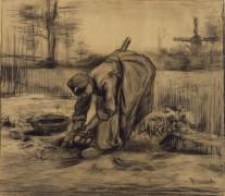 Крестьянка, копающая картофель ( Peasant Woman Lifting Potatoes), 1885 - Гог, Винсент ван