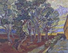 Сад лечебницы в Сен-Реми (The Garden of the Asylum in the Saint-Remy), 1889 - Гог, Винсент ван