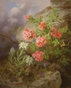Альпийские цветы - Лауэр, Йозеф