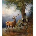Молодой олень в лесу у ручья - Гауэрман, Фридрих