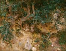 Чертополох на склоне холма в Вальдемосе, Мальорка - Сарджент, Джон Сингер