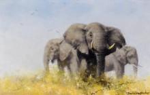 Три африканских слона - Шеперд, Девид (20 век)