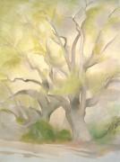Зеленые деревья - О'Кифф, Джорджия