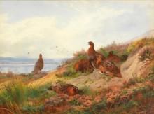 Птицы на берегу реки - Торберн, Арчибальд