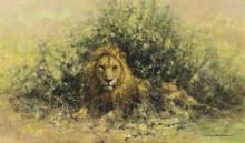 Лев в кустах - Шеперд, Девид (20 век)