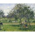 Крестьянка с  корзиной в саду, 1881 - Писсарро, Камиль