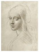 Рисунок женской головы к картине Мадонна в скалах - Винчи, Леонардо да