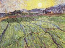 Огороженное поле с восходящим солнцем (Enclosed Field with Rising Sun), 1889 - Гог, Винсент ван