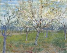 Фруктовый сад с цветущими абрикосами (Orchard with Blossoming Apricot Trees), 1888 - Гог, Винсент ван