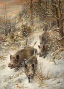 Лесной пейзаж с дикими кабанами - Лоренц, Вильгельм