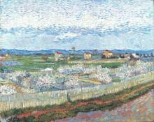 Цветение персиков в Ле Требон (Peach Blossom in Le Trebon), 1889 - Гог, Винсент ван