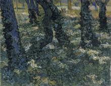 Стволы деревьев с плющом (Undergrowth), 1889 - Гог, Винсент ван