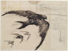 Четыре стрижа с пейзажными зарисовками (Four Swifts with Landscape Sketches), 1887 - Гог, Винсент ван