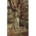 Собака художника по кличке Флеш - Тулуз-Лотрек, Анри де