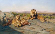 Львиное семейство - Бонёр, Роза