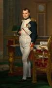 Император Наполеон в своём кабинете в Тюильри - Давид, Жак-Луи