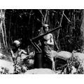Битва за Гуадалканал: морская пехота США