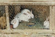 Кролики - Монтезен, Пьер-Эжен