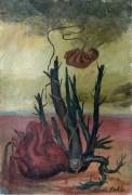 Сердце, кактус и эмбрион - Кало, Фрида