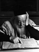 Раввин читает Талмуд