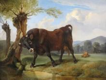 Бык на пастбище - Гауэрман, Фридрих