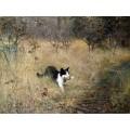 Кошка с добытой птицей - Лильефорс, Бруно