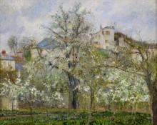 Весна, цветущие груши - Писсарро, Камиль